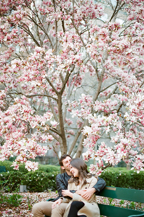 new york city engagement photos with cherry blossoms 04