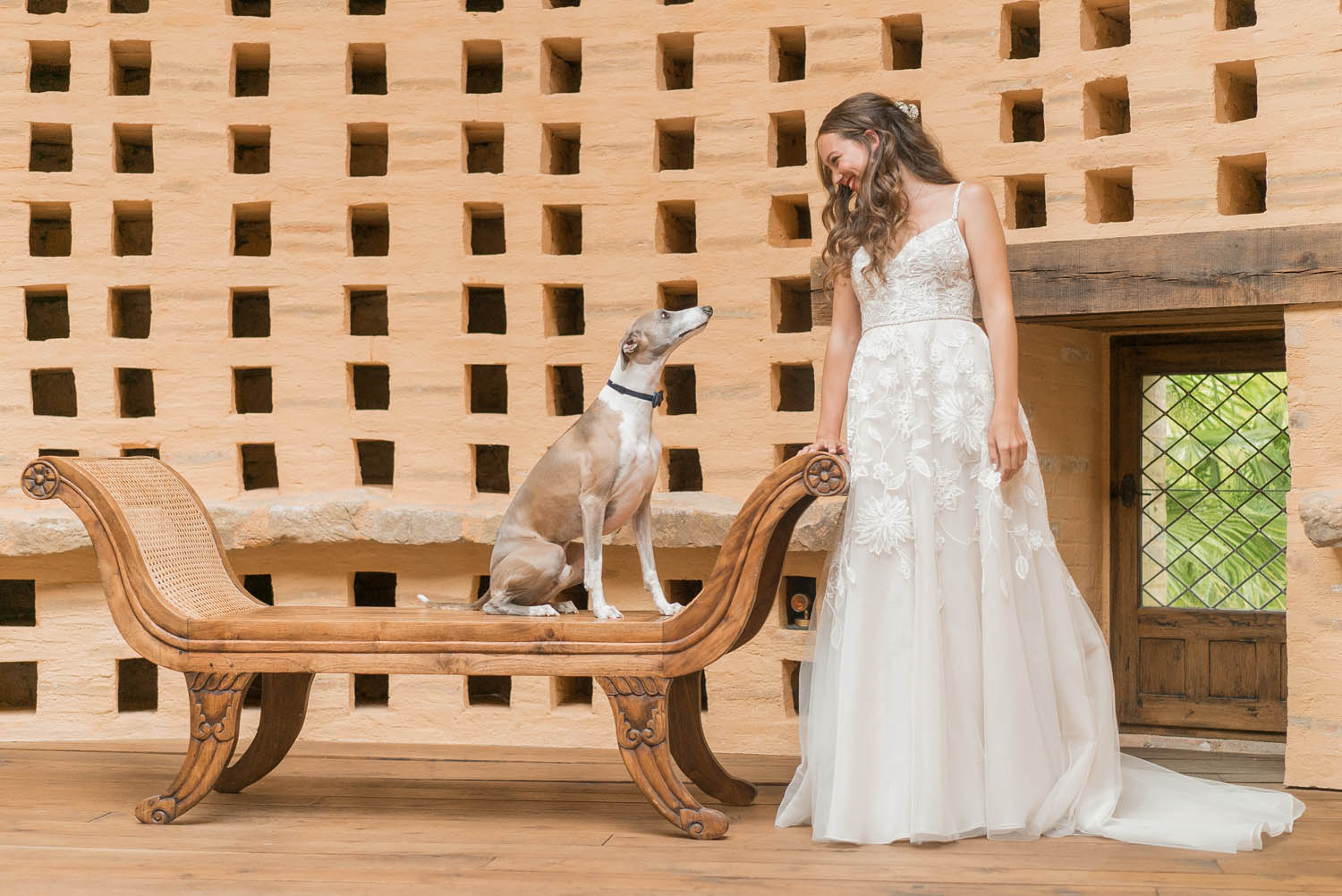 french wedding with bride and whippet