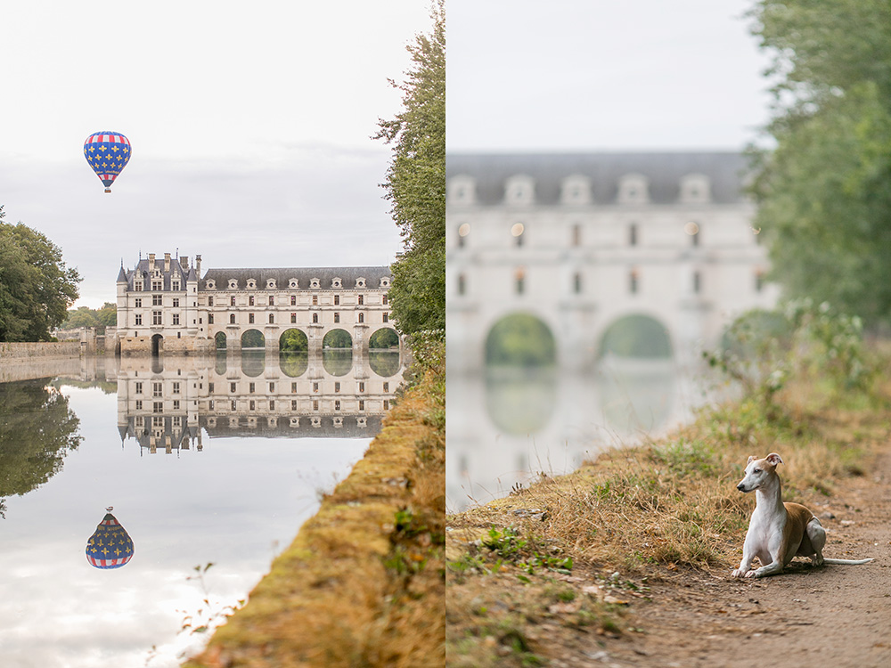 chateau chenonceau whippet and hot air balloon
